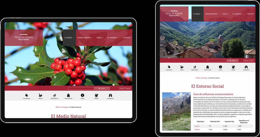 parque nacional picos europa diseño web asturias